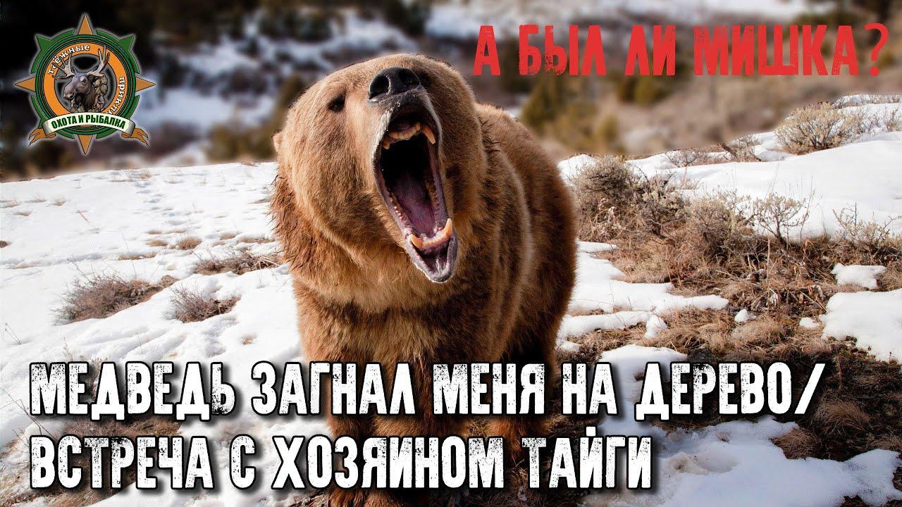 Встреча с медведем полная версия/Осторожно! Ненормативная лексика!