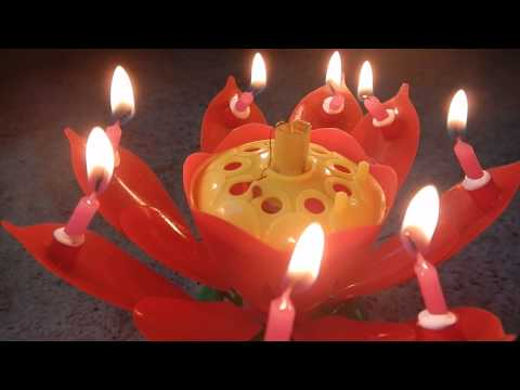 Flower Musical Birthday Candle Review