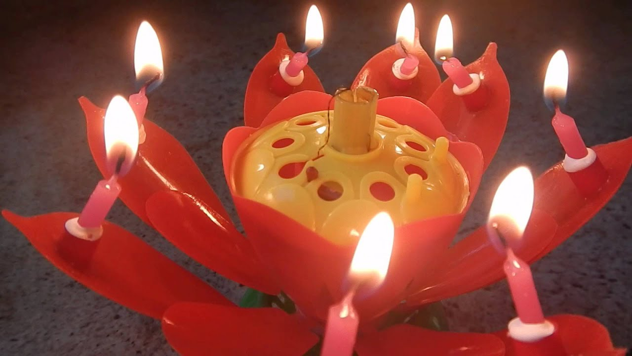 Flower Musical Birthday Candle Review Youtube