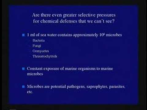 Survival in the Sea: Biochemical Warfare - Perspectives on Ocean Science