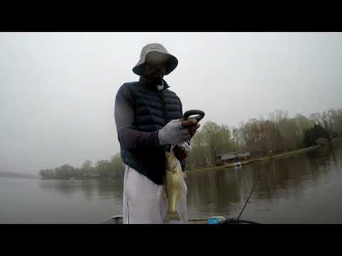 YouTube Spring Bass Tournament | Lake Of The Woods Virginia