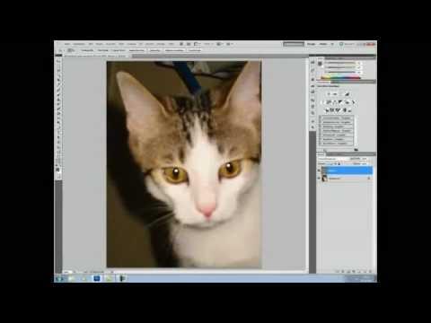Unscharfe Bilder retten ][ Photoshop Tutorial #2