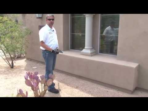 Termite Treatment in Phoenix, AZ by Ky-Ko Pest Prevention