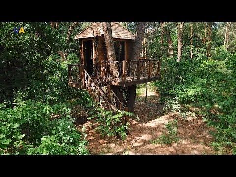 Первые в Украине дома на деревьях от Светланы Дзюбы   Мастер дела