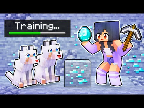 Our Dogs go to WOLF SCHOOL In Minecraft!