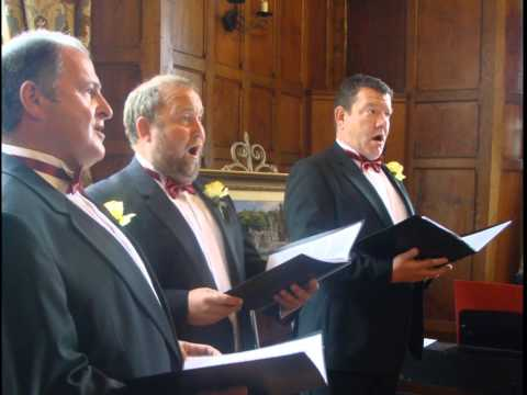 Trio Canig - Wedding Performance (Nella Fantasia) Welsh Trio