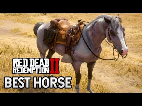 How to Get the BEST Horse in Red Dead Redemption 2 (RDR2 Tips)