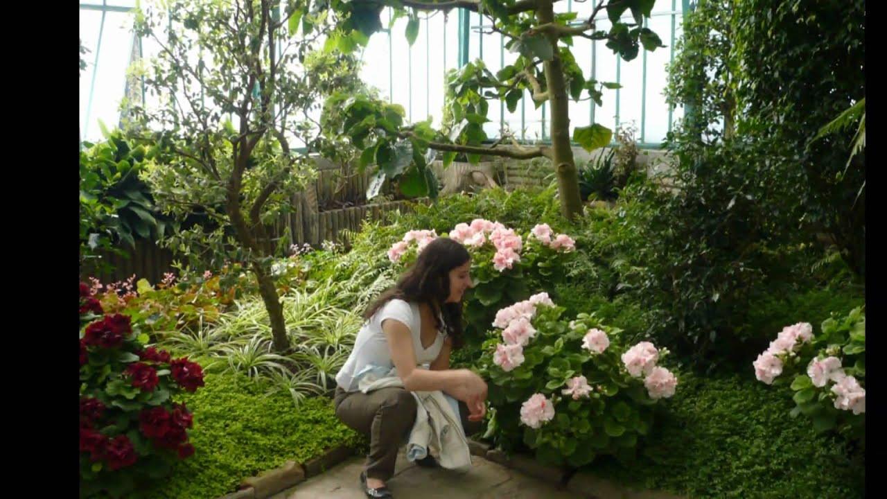 Serres Royales De Laeken Le Jardin De La Reine Bruxelles
