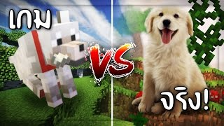 ✔️สิ่งมีชีวิตในเกม Vs สิ่งมีชีวิตในชีวิตจริง | Creatures in the game Vs creatures in real life.