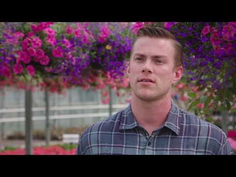 Growing The Future At Van Wingerden Greenhouses