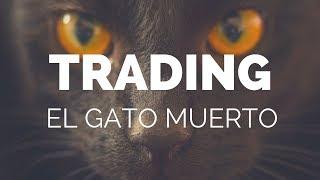 CURSO DE TRADING GRATIS #2 - La Teoría del Gato Muerto