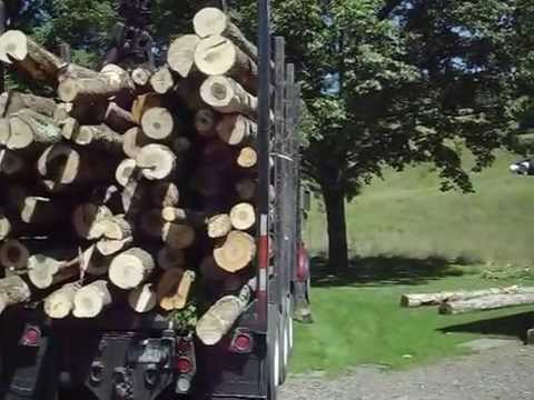 How to deliver logs with a tri-axle truck