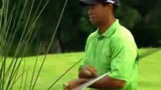 Tiger Woods 2009 Cheats