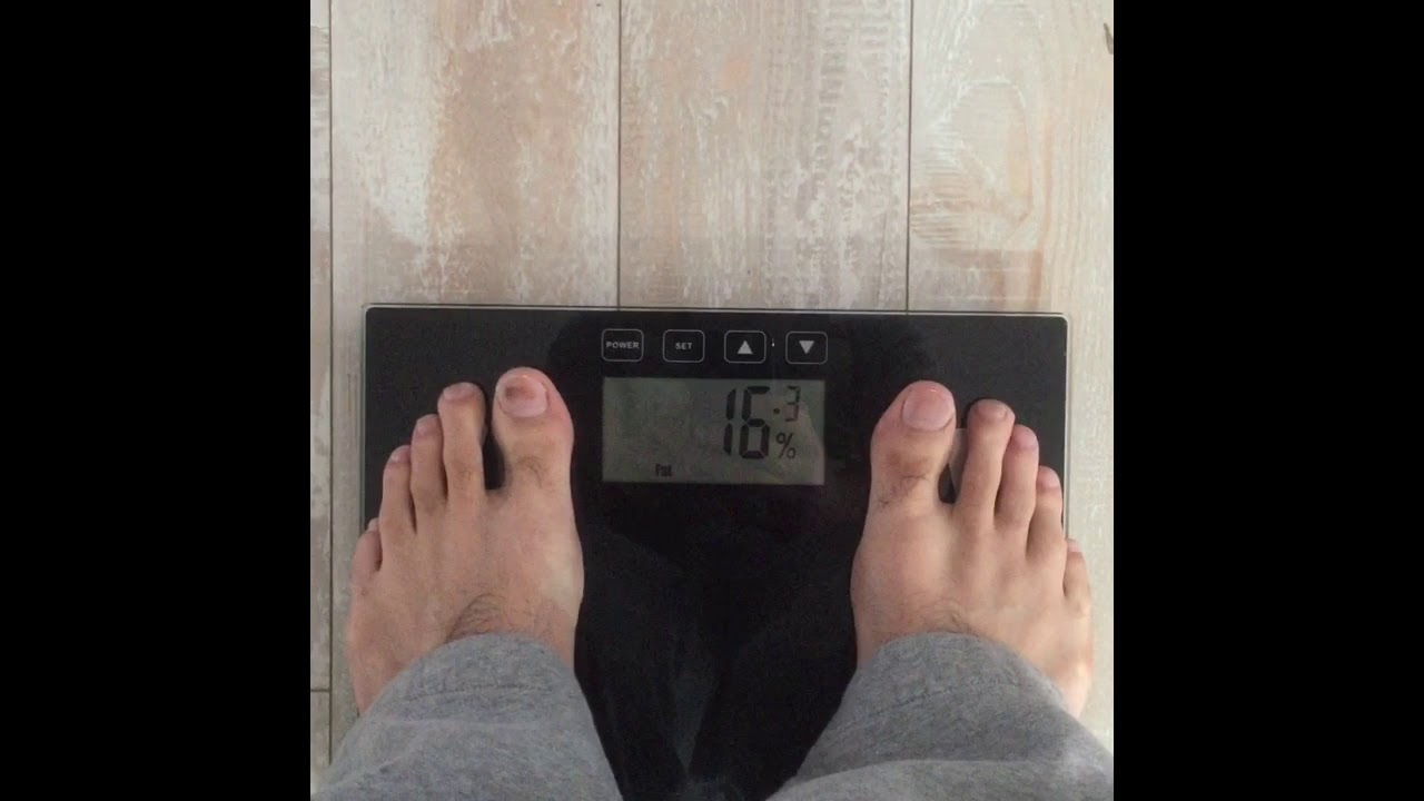 Taylor body fat analyzer scale think, that