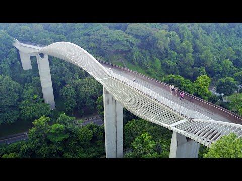 (Drone)【HENDERSON WAVES BRIDGE】SINGAPORE