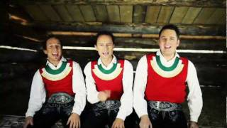 Die Goaß is weg 2011 - Die jungen Zillertaler (JUZI) GLTV