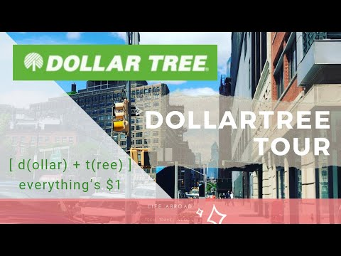Let's Visit Dollar Tree Store In New York | Everything Is $1