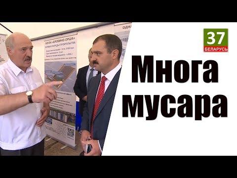 Жизнь в Беларуси - анализы. Новости с Данутой Хлуснёй. Пародия