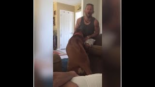 ►Did the dog bite his owner?!◄ Animal Fail Video