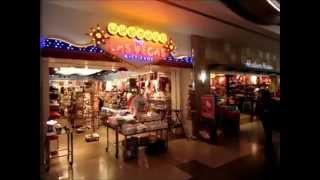 Las Vegas McCarran Airport TOUR - Slot Machines, Shops!