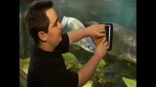John Marcus Monstrous 10,000 Gallon Aquarium