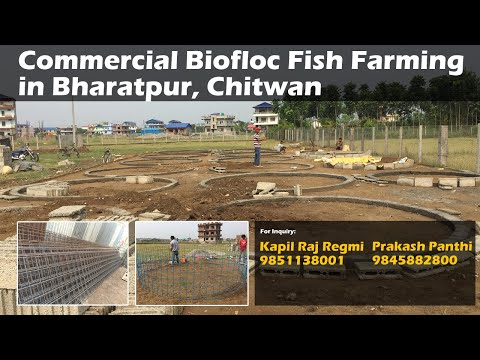 Biofloc field design in Bharatpur, Chitwan, Commercial