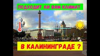 Подходит ли вам климат в Калининграде