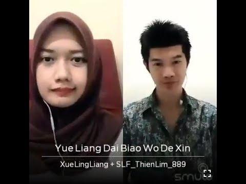 Yue Liang Dai Biao Wo De Xin 月亮代表我的心