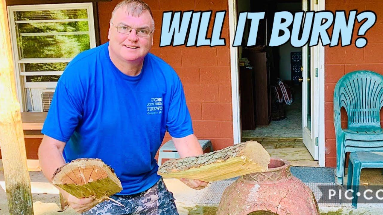 Will recently split cherry firewood blocks burn?