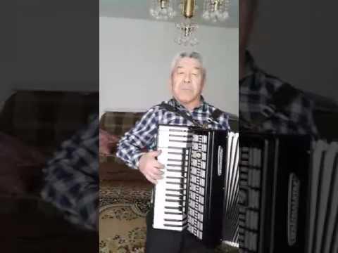 """Песня на аккордеоне """"Нурикамал"""""""