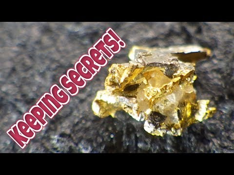 Gold Processing plant's first big run. (Hard rock crystal nuggets!)