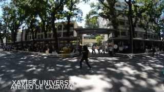Vote or Die Trying Flash Mob 2013