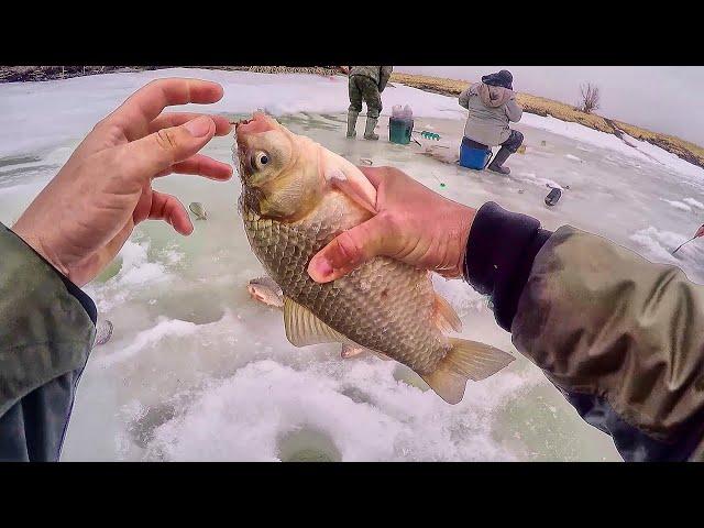 Карась по последнему льду. Незабываемая рыбалка! Рыбалка весной на карася