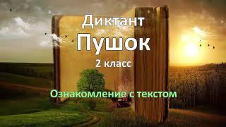 Диктант по русскому языку за 2 класс, Пушок