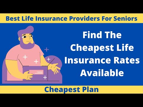 Find The Cheapest Life Insurance Rates Available