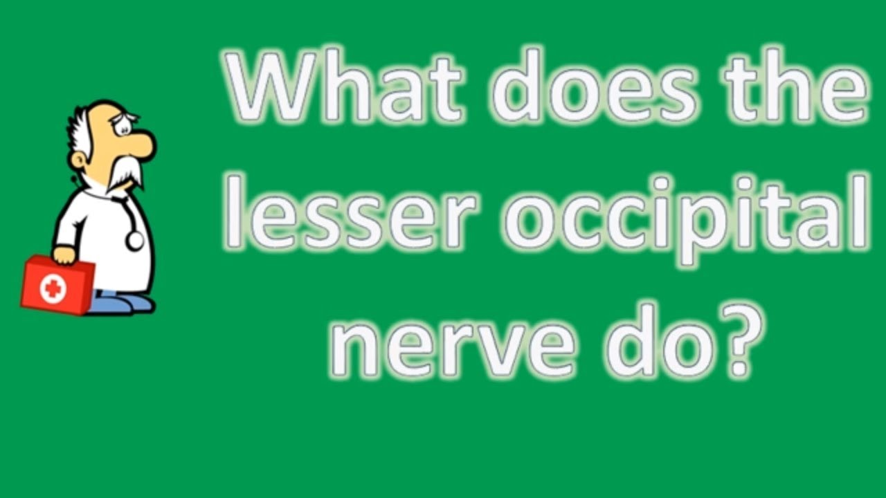 What does the lesser occipital nerve do ? | Best Health FAQ Channel ...