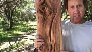 Wall Art Wood Sculpture