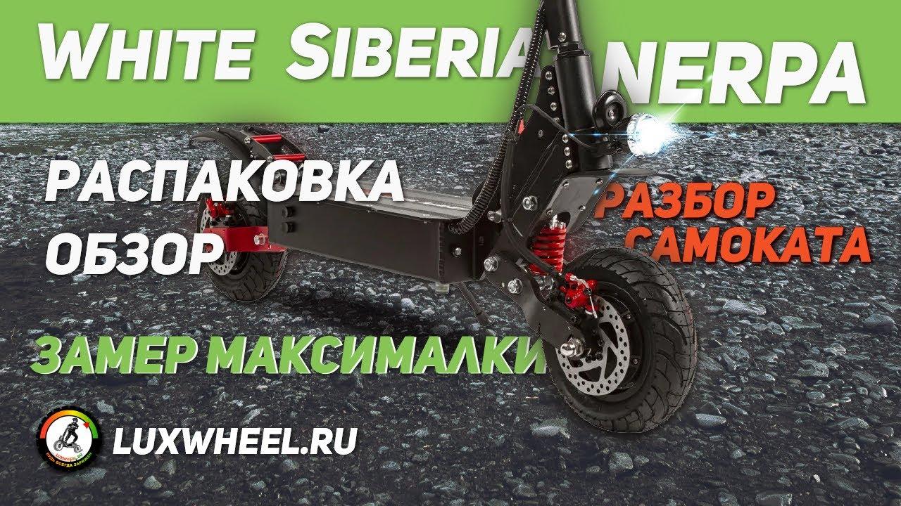 Электросамокат White Siberia NERPA - распаковка, обзор, замер максималки, разбор
