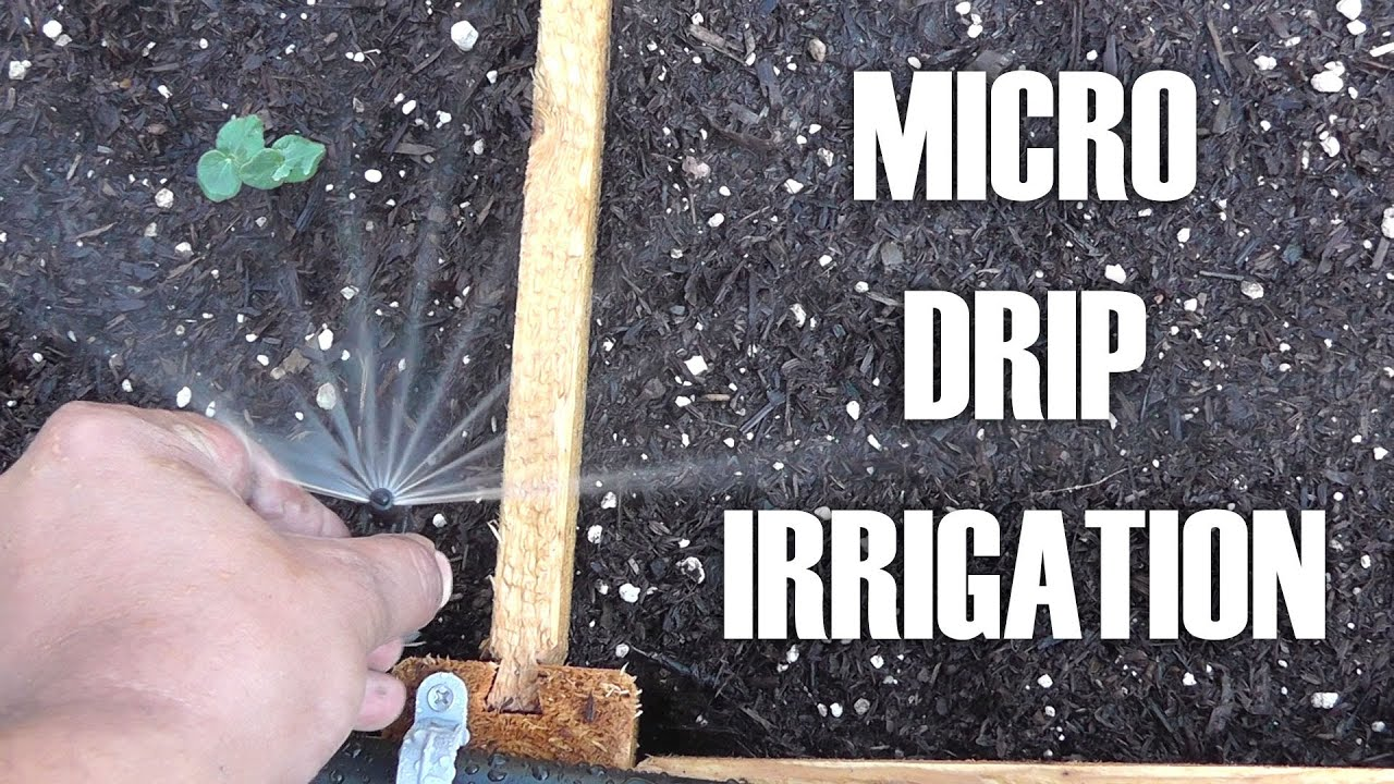 Adding Micro  Drip Irrigation For Raised Bed Garden By Converting Existing Sprinkler System