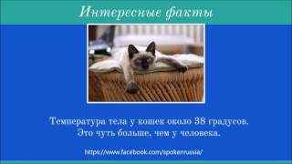 Interesting facts1 (температура тела)