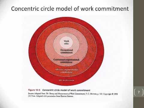 Organizational Attitudes and Behavior