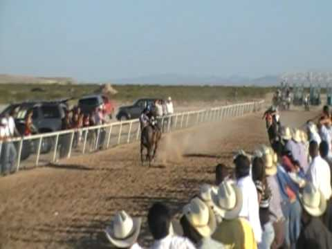clint texas horse racing - YouTube