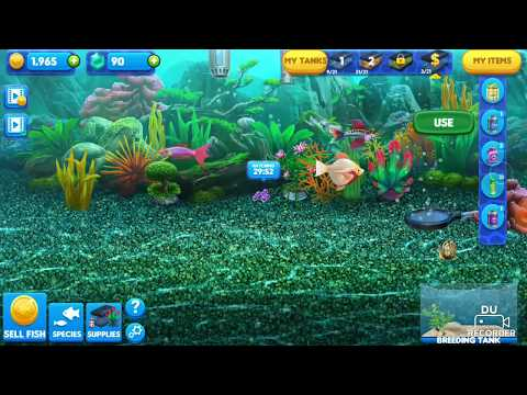 Fish Tycoon 2 - Nyoba Beli Rare Egg