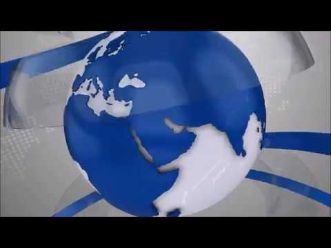 VII Первенство и Чемпионат Санкт-Петербурга по Киокушинкай ИКО Мацушима 28.10.2018