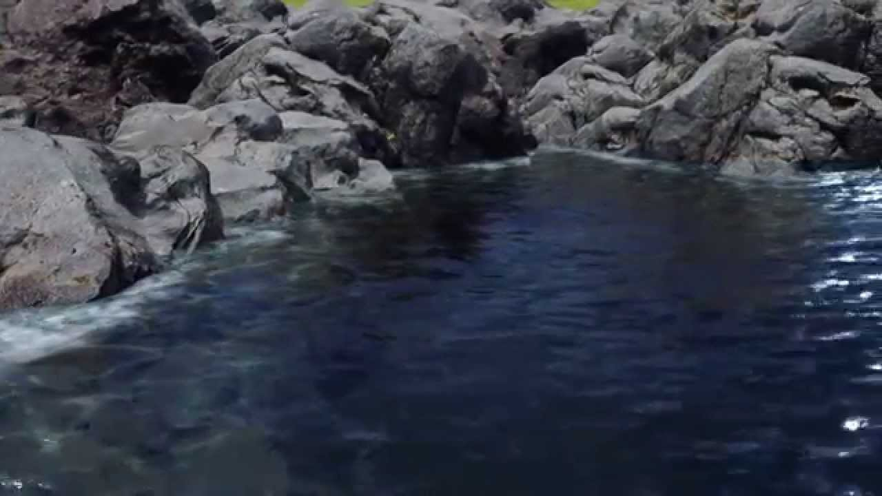 Unreal Engine 4 8 water / grass test
