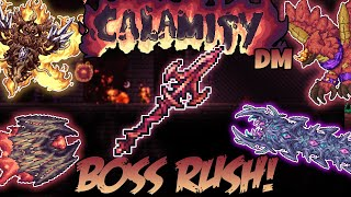 Calamity Boss Rush ||Death Mode - Rogue||