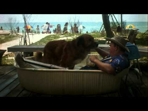 Summer Rental Trailer Youtube