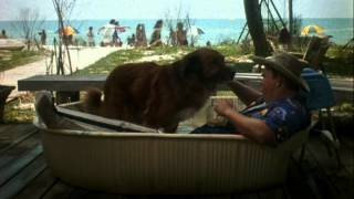 Summer Rental - Trailer