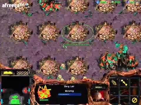 스타크래프트1 빨무 1:7 컴퓨터 상대하기 (저그편) (starcraft brood war fastest 1vs7 computer zerg)