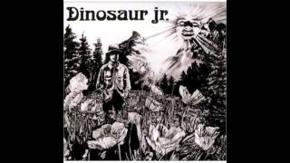 Watch Dinosaur Jr Forget The Swan video